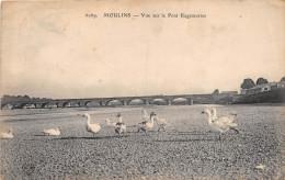Moulins VDC 6069 Oies - Moulins