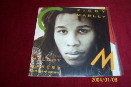 ZIGGY  MARLEY  °  MELODY MAKERS  °° TUMBLIN'DOWN - Reggae