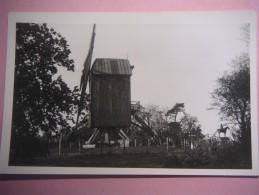 2553 MONT CASSEL Moulin Erige Sur Lancien Kasteel - Cassel