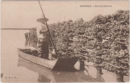ESNANDES DANS LES BOUCHOTS MOULES TBE - France