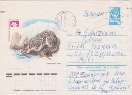 URSS ENTIER POSTAL FELIN - Big Cats (cats Of Prey)