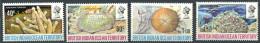 158 Territoire Britannique OCEAN INDIEN 1972 - Coraux (Yvert 44/47) Neuf ** (MNH) Sans Charniere - Territoire Britannique De L'Océan Indien