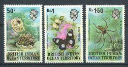 158 Territoire Britannique OCEAN INDIEN 1973 - Papillon Araignee Corail (Yvert 54/56) Neuf ** (MNH) Sans Charniere - Territoire Britannique De L'Océan Indien