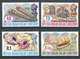 158 Territoire Britannique OCEAN INDIEN 1974 - Coquillage (Yvert 59/62) Neuf ** (MNH) Sans Charniere - Territoire Britannique De L'Océan Indien