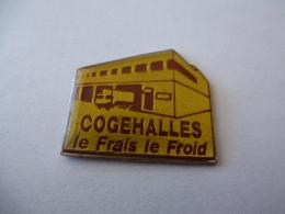 PINS COGEHALLES LE FRAIS LE FROID / 33NAT - Food