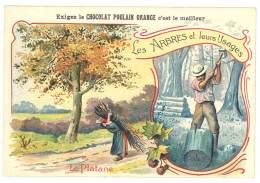 Chromo Chocolat Poulain Orange, Les Arbres Et Leurs Usages - Le Platane ( Bois, Fagot, Bûcheron )