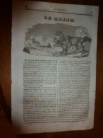 1836 LM :Le RENNE; Le CHILI Et Les Chiliens(nes);Architecture Toscane; LESUEUR Eustache Peintre);Assomption De St-Bruno - Vieux Papiers