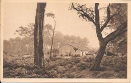 DEPT 40 -  LES LANDES DE GASCOGNE - Une Ferme Dans Les Landes   - ENCH1202 - - France