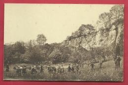 Namur - Institut St-Louis ( Parc Saint-Fiacre ) - Elèves En Balade Au Pied Du Grand Rocher - Namen