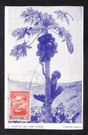 CV-07  COLHENDO PAPAIAS - Cap Vert