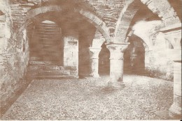 GEMBLOUX (5030) : La Crypte (ou Cellier) De L'ancienne Abbaye D'Olbert. CPSM Rare. - Gembloux