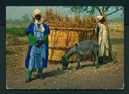 NIGERIA  -  Northern Nigeria  Unused Postcard - Nigeria