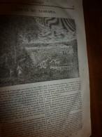 1833 LM :Chute Du NIAGARA; Le Saint Sépultre ; Le REQUIN ; Le COTONNIER ; Secours à Donner Aux Noyés - Vieux Papiers