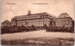 57 CHÂTEAU SALINS - Landwirtschafts Schule - Chateau Salins