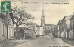 La Chataigneraie (Vendée) - Avenue De Fontenay-le-Comte - Collection A. Robin - La Chataigneraie