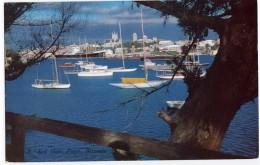 Bermuda: Red Hole, Paget - Bermuda