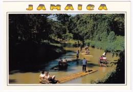 Jamaica - Somerset Falls : Rafting - Jamaica