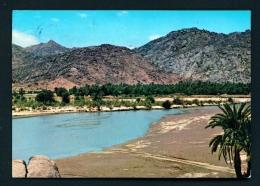 SAUDI ARABIA  -  Wadi Najran  Used Postcard As Scans - Saudi Arabia
