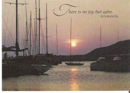 There Is No Joy But Calm.  Tennyson - Philosophy