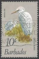 Barbados. 1979 Birds. 10c Used. SG 626 - Barbados (1966-...)