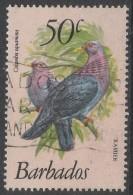 Barbados. 1979 Birds. 50c Used. SG 633 - Barbados (1966-...)