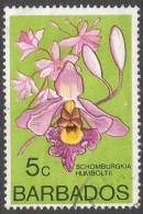 Barbados. 1974 Orchids. 5c Used. SG 514 - Barbados (1966-...)