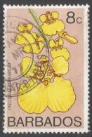 Barbados. 1974 Orchids. 8c Used. SG 490 - Barbados (1966-...)