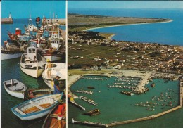 85---ILE DE NOIRMOUTIER---le Port De L´HERBAUDIERE--voir 2 Scans - Ile De Noirmoutier