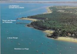 85---ILE DE NOIRMOUTIER---voir 2 Scans - Ile De Noirmoutier