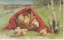 Frohliche Ostern - Joyeuses Pâques - Poussin Dans Panier - Pâques