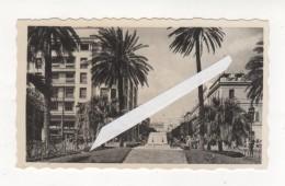 PHOTO TUNIS  TOMBEAU DU SOLDAT INCONNU  TUNISIE - Africa