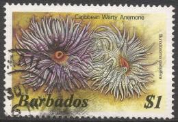 Barbados. 1985 Marine Life. $1 Used. No Date Imprint. SG 806B - Barbados (1966-...)