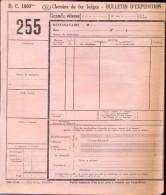 Blanco Vervoerbewijs Spoorwegen Chemins De Fer - - Titres De Transport
