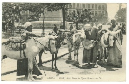 Egypte // Le Caire  Donkey Boys, Scene In Opéra Square - Le Caire
