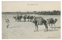Algérie // Paysage Du Sud - Algérie