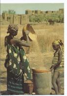 Haute Volta ( Actuel Burkina Faso ) Vannage Du Mil Près De Koudougou - Cpsm - 1983 Ed Attier - - Burkina Faso