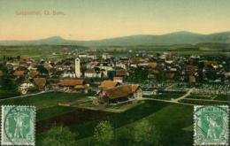 CH LANGENTHAL / Vue Panoramique / CARTE GLACEE - BL Bâle-Campagne
