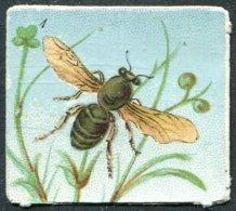 Old Embossed Vignette Cinderella BEE Bees Honey Biene Honig Abeille Miel FLOWER Blüte Fleur - Honeybees