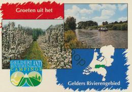 Tiel - Gelderland - Rivieren Campings (KST 355 - Pays-Bas