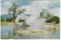 Rotorua Government Gardens : Thermal Pool With Its Active Vents - Nieuw-Zeeland