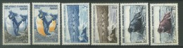VEND TIMBRES DES T.A.A.F. N° 2 - 7 , NEUFS SANS CHARNIERE !!!! (a) - French Southern And Antarctic Territories (TAAF)