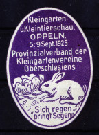 A3893) Vignette Oppeln Kleintierschau 5.-9.9.1925 Mit Abbildung Hase - Erinnophilie