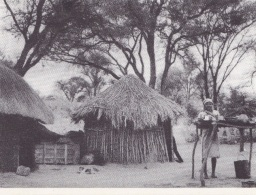RHODESIA -ZIMBABWE -F/G B/Nero  (80312) - Zimbabwe