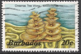 Barbados. 1985 Marine Life. 20c Used. No Date Imprint. SG 798B - Barbados (1966-...)