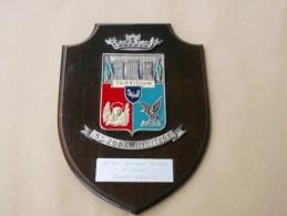 Crest Nominativo Alto Ufficiale Del 183° Nembo Del 1982 Con Targhetta Originale - Militari