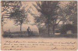 26618g  AGRICULTURE - SERRES - Hannut - 1902 - Hannut