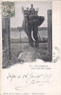 INDOCHINE. LAOS. N 309.  UN ELEPHANT AVEC SON BAT AN 1912 - Laos