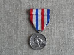 Médaille Des Cheminots 1941 S.N.C.F Nominative L. Brugier Graveur Ch. Favre Bertin. Voir Photos. - Professionals / Firms