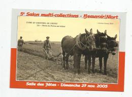 Cp , Bourses & Salons De Collections , 5 éme Salon Multi - Collections , BEAUVOIR SUR NIORT , 2005 , Vierge - Bourses & Salons De Collections