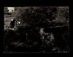 22 - CALLAC - - Callac